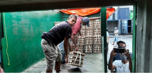 Stok Telur di Pasar Bertambah 15 Kontainer